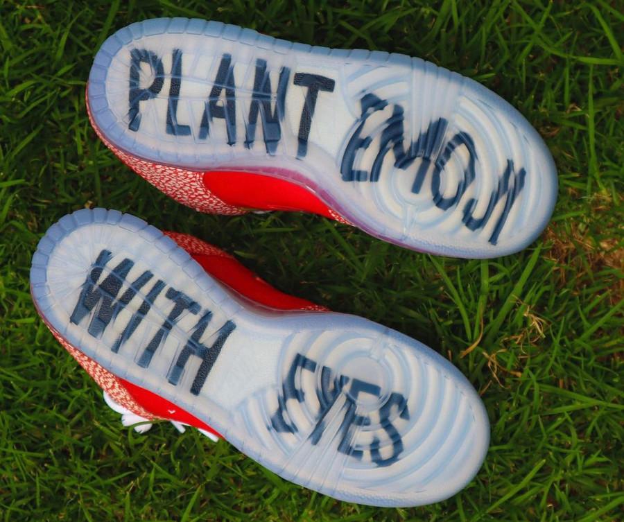 Nike SB dunk Low champignon rouge et blanche (8)