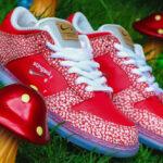 Stingwater x Nike Dunk Low Pro SB Magic Mushroom