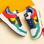 Nike Dunk Disrupt Low Wmns Multicolor